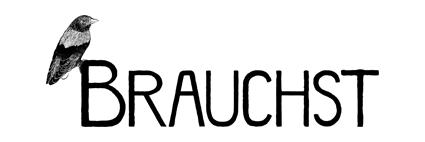 Brauchst Impressum Logo Graz